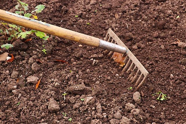 Rake, Gardening, Garden, Agriculture, Work, Tool