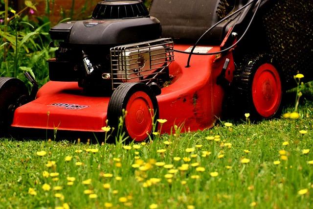 Lawn Mower, Mow, Lawn Mowing, Green, Meadow, Gardening