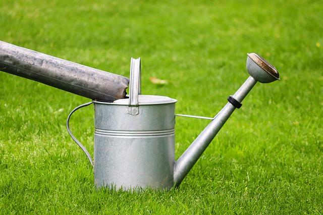 Watering Can, Metal, Inlet, Fill, Gardening, Garden
