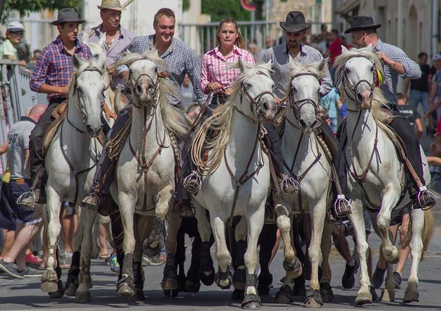 Camargue, Horses, Riders, Gardians, Horseback Riding