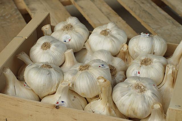 Garlic, Garlic Elephant, Bulb, Garlic Grown, Vegetable