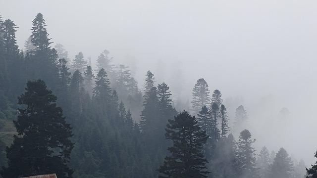 Georgia, Mountains, Fog