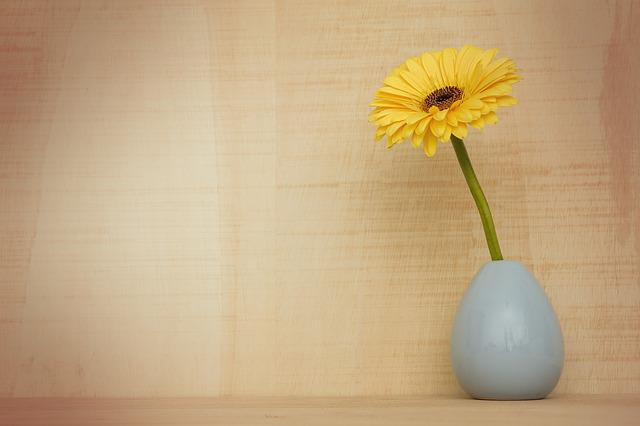 Gerbera Flower, Nature, Desktop, Summer, Wood