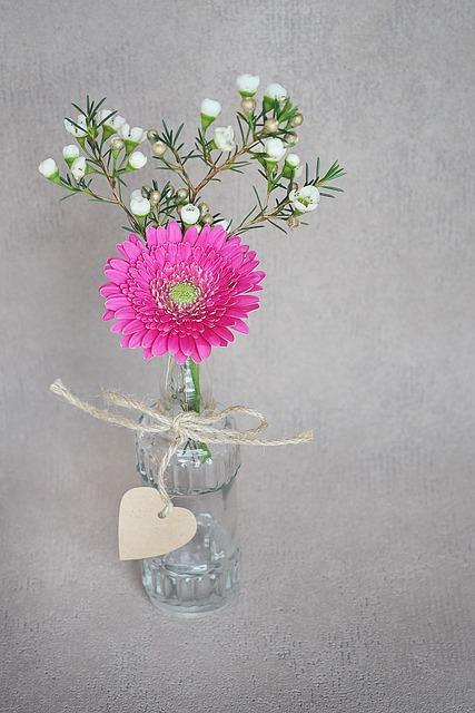 Free Photo Gerbera Vase Pink Frangipani White Bloom Blossom Max Pixel