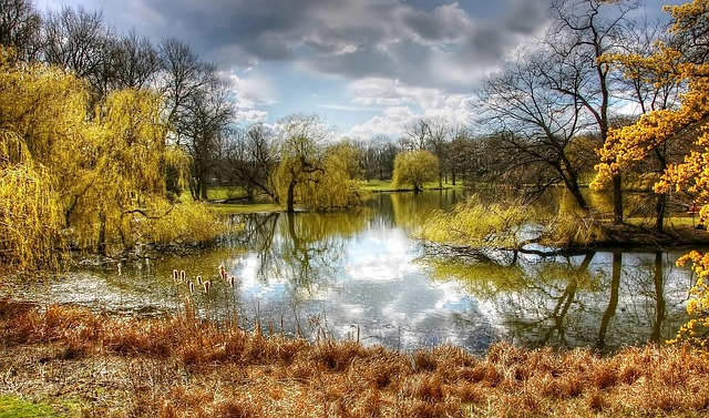 Park, Braunschweig, Nature, Germany, Landscape, Lake
