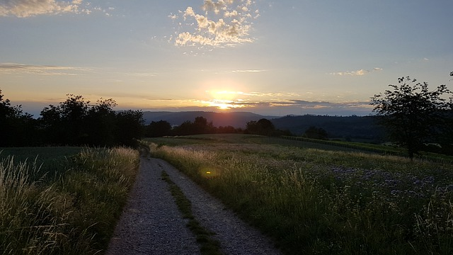 Sunrise, Lahr, Schwarzwald, Baden-württemberg, Germany