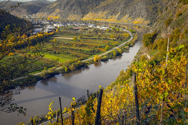 Vineyards, Mosel, Germany, River, Wine, Winegrowing