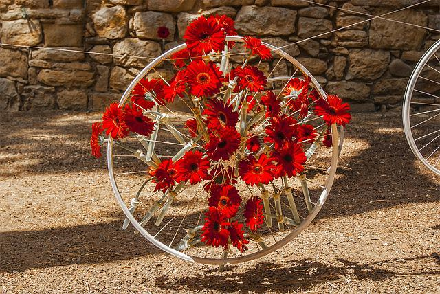 Time Of Flowers, Gerona, Bicycle Wheel, Flowers