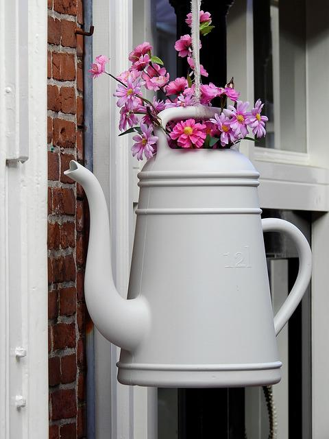 Gies Jug, Flowers, Deco, Decoration, Plant, Beautiful