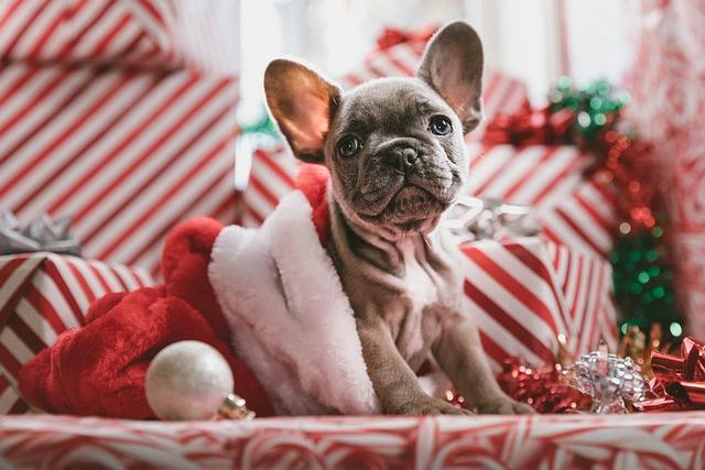 Christmas, Celebration, Gifts, Jewelry(architecture)