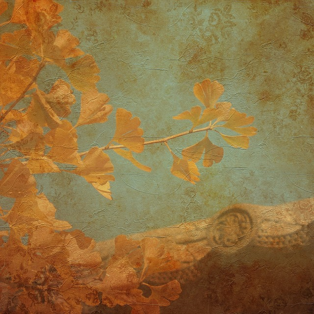 Texture, Background, Ginkgo, Ginkgo Tree, Leaves