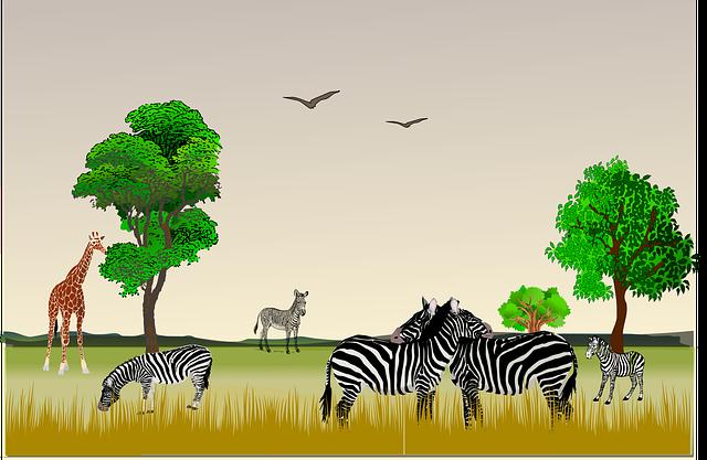 Animal, December 9, December 10, East Africa, Giraffe