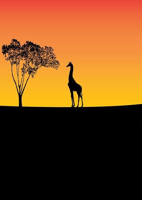Giraffe, Wildlife, Tree, Nature, Animal, Wild, Africa