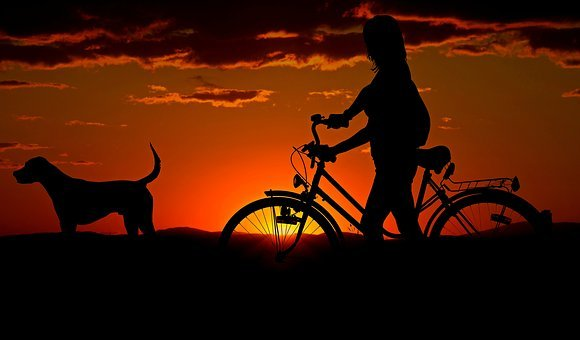 Woman, Girl, Bike, Sunset, Walk, Abendstimmung, Dog