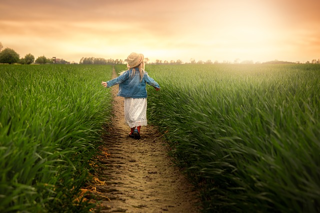 Child, Field Sun, Playful, Sunset, Girl