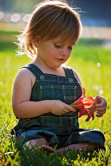 Girl, Sitting, Flower, Red, Baby, Toddler, Portrait