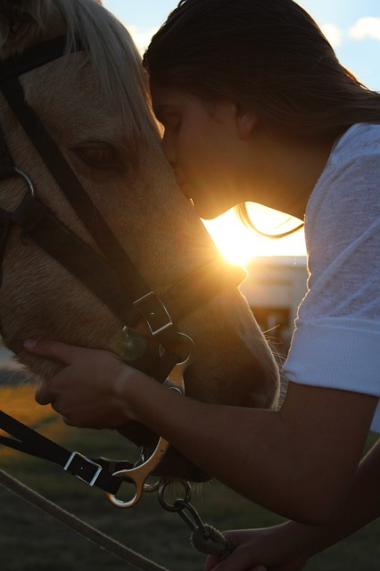 Horse, Girl, Love, Kissing, Kiss, Sunset, Son, Portrait