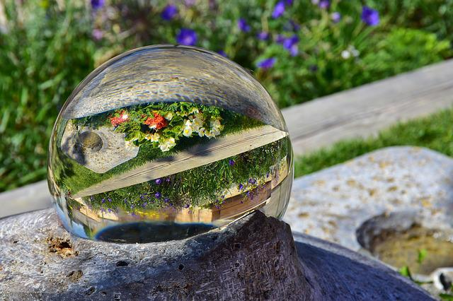 Glass Ball, Mirroring, Flowers, Colorful Flowers