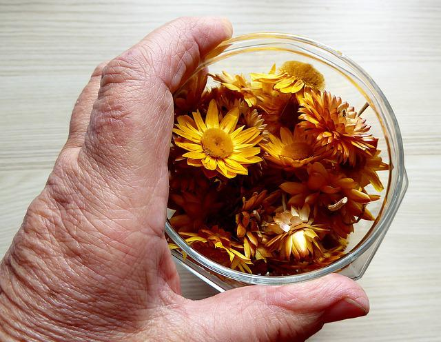 Dried Flowers, Colorful, Hand, Glass, Color, Flora