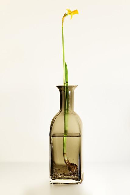 Water, Flowers, Yellow, Glass, Flower, Green, Bulb