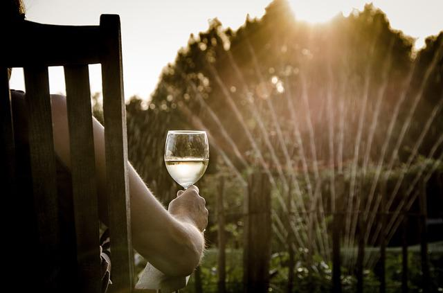 Summer, Wine, People, Woman, Glass, Sprinkler, Sun