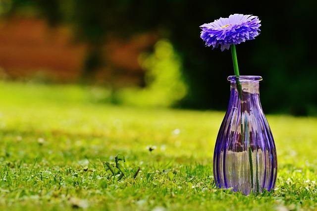 Vase, Glass, Flower, Decoration, Purple, Transparent
