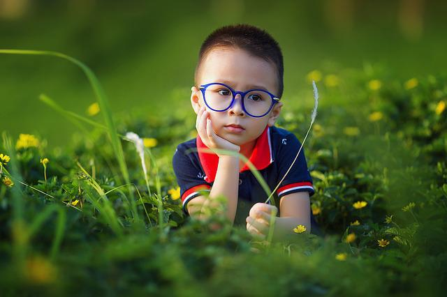 Kid, Boy, Field, Glasses, Spectacles, Eyeglasses, Child