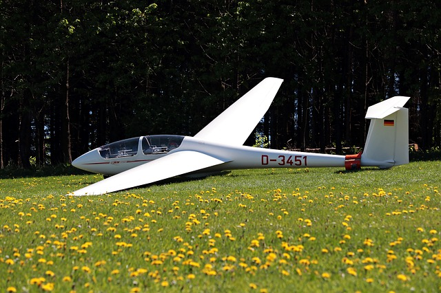 Glider, Meadow, Flying, Aircraft, Air Sports, Leisure
