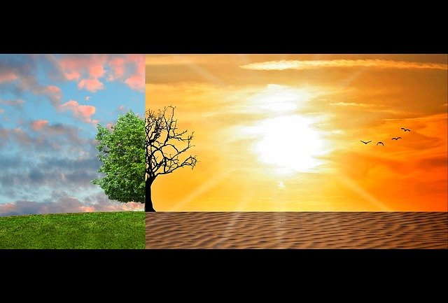 Climate Change, Global Warming, Climate, Change, Desert
