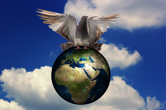 Harmony, Dove, Peace Dove, Globe, Sky, Bird, Nature