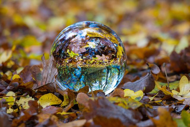 Autumn, Glass Ball, Ball, Fall Foliage, Globe Image
