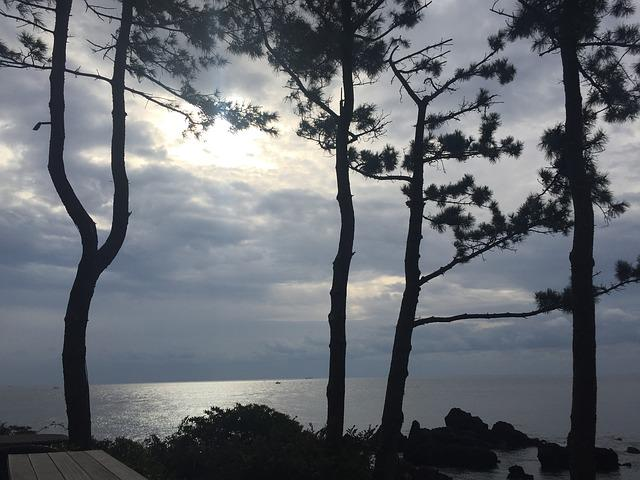 Jeju Island, Pause, Glow, Sea