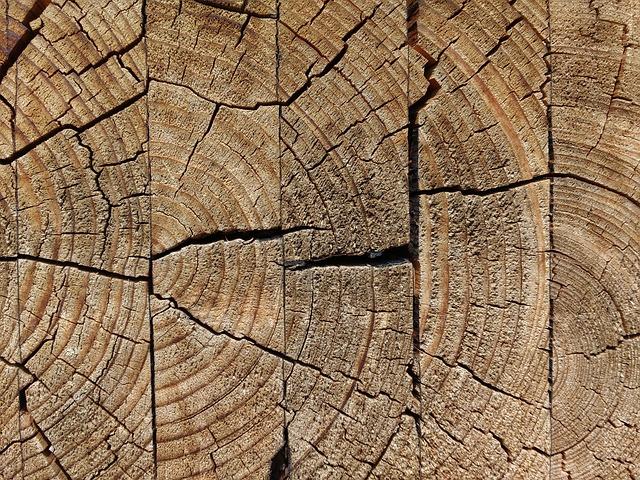 Wood, Glued, Weathered, Jumped, Cracks, Old