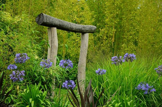 Agapanthus, Garden, Japanese Gate, Goal