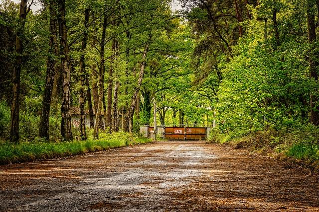 Road, Away, Lost Places, Asphalt, Goal, Barrier, Closed