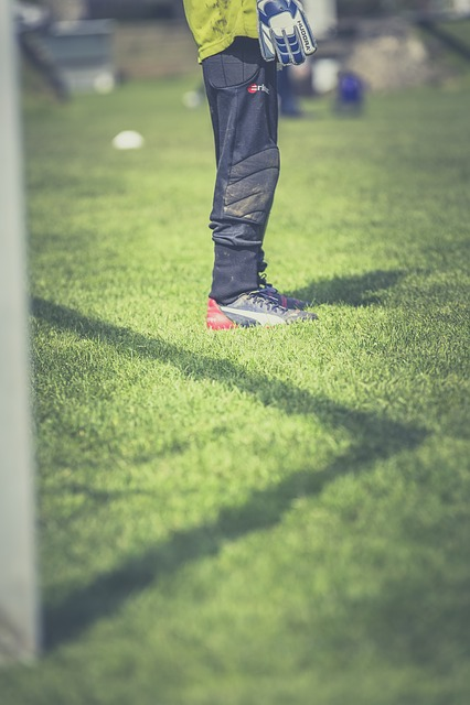Football, Goalkeeper, Footballers, Sport, Door Husband