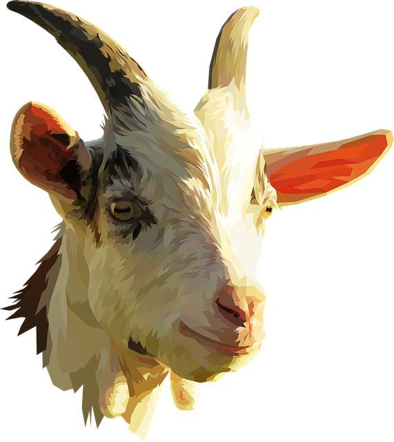 Goat, Low Poly, Animal, Farm, Head