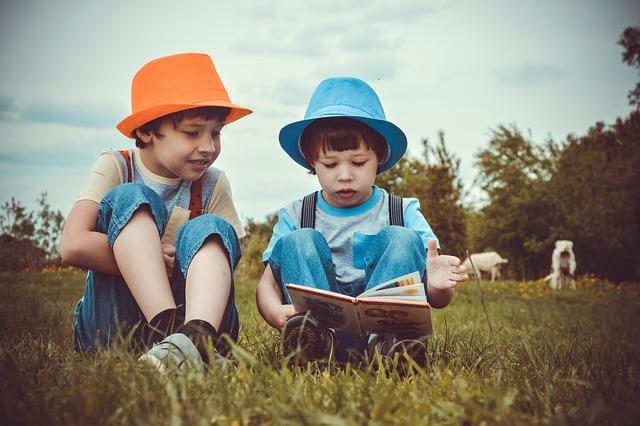 Two Boys, 2 Children, Read, Meadow, Goats, Village
