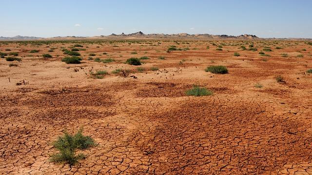 Mongolia, Sand, Desert, Gobi
