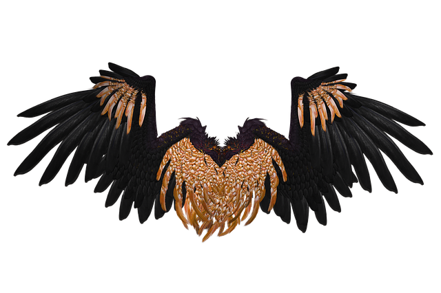 Wing, Angel, Fly, Gold, Black, Png, Isolated, 3d