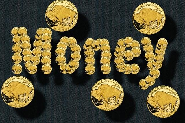 Nickel, 24 Karat, Coin, Gold, Bull, Stie, R Wertvolll