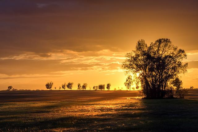 Sunset, Sun, Golden, Abendstimmung, Sky, Setting Sun