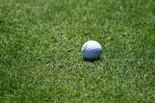 Ball, Fairway, Golf, Golf Ball, Grass