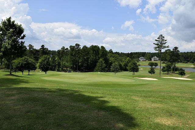 Golf, Grass, Course, Fairway, Putt, Tee, Golfer, Hole