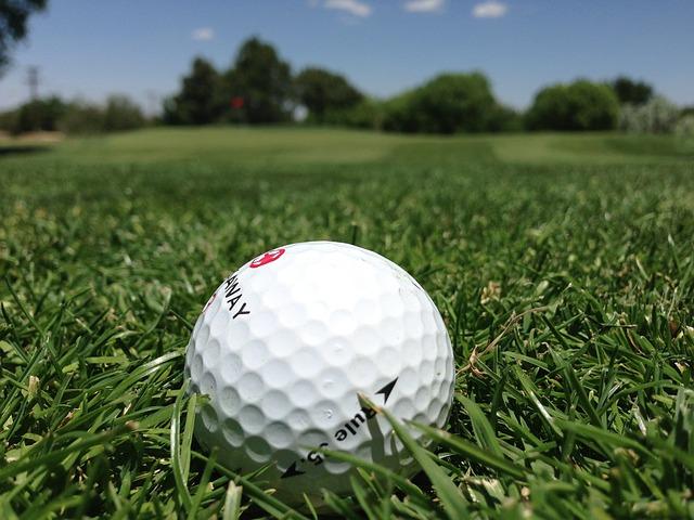 Golf, Golf Ball, Grass, Golf Course