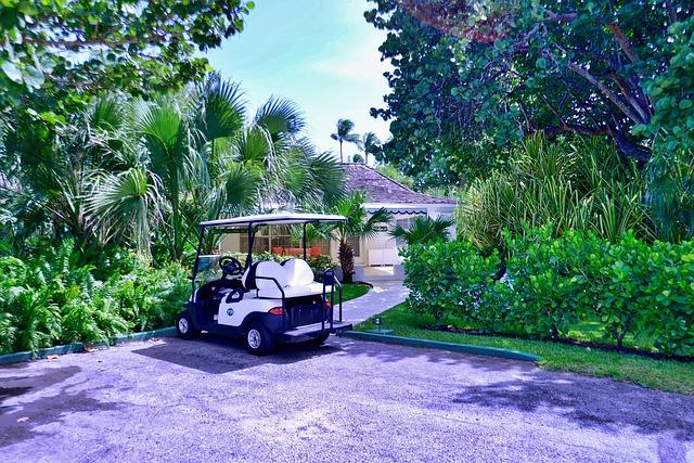 flora kart Free photo Golf Kart Tree Garden Golf Flora Summer Nature   Max Pixel flora kart