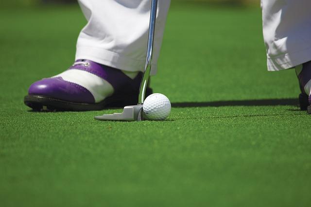Golf, Golf Ball, Golfing, Hole, Golf Course, Putting