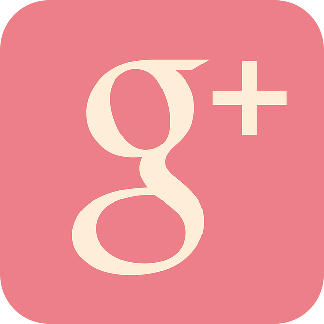 Google Plus, Social, Media, Plus, Google, Sign, Icon