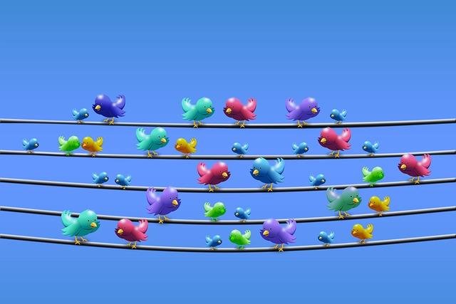 Twitter, Line, Power Line, Sit, Communication, Gossip