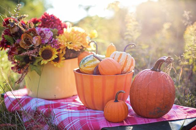 Still Life, Still-life, Still, Life, Pumpkins, Gourds
